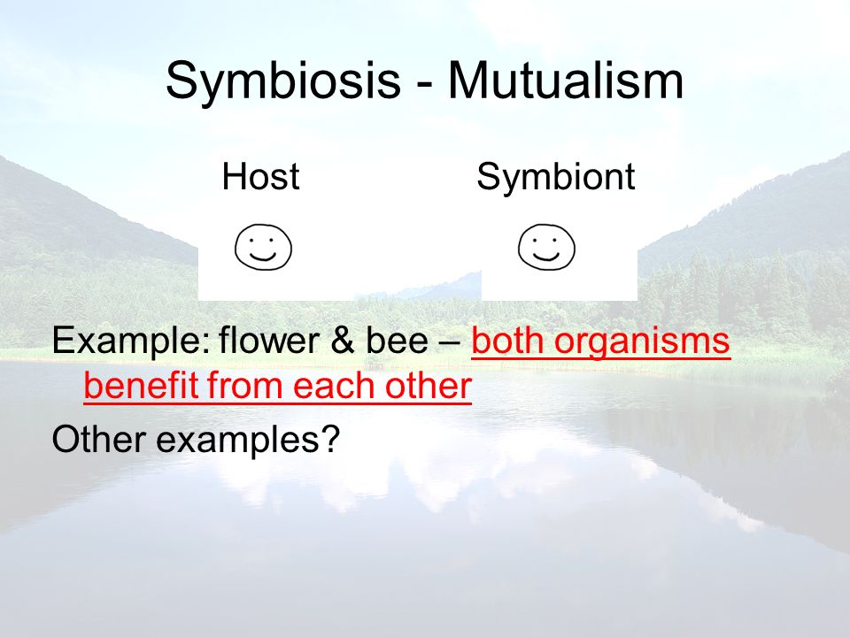 Symbiosis - Mutualism HostSymbiont Example: flower & bee – both organisms benefit from each other Other examples?