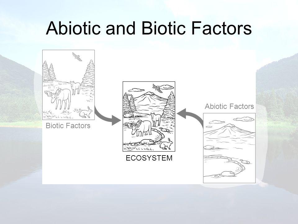 Abiotic and Biotic Factors Biotic Factors ECOSYSTEM Abiotic Factors