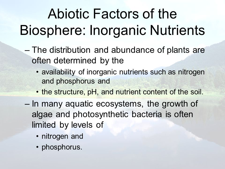 Abiotic Factors of the Biosphere: Inorganic Nutrients –The distribution and abundance of plants are often determined by the availability of inorganic