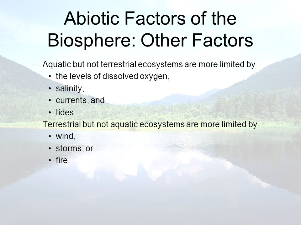 Abiotic Factors of the Biosphere: Other Factors –Aquatic but not terrestrial ecosystems are more limited by the levels of dissolved oxygen, salinity,