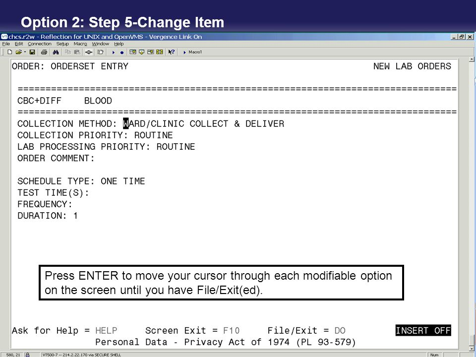 Press ENTER to move your cursor through each modifiable option on the screen until you have File/Exit(ed). Option 2: Step 5-Change Item