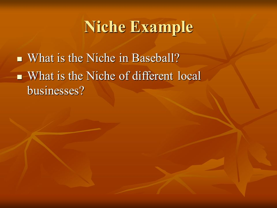 Niche Example What is the Niche in Baseball.What is the Niche in Baseball.