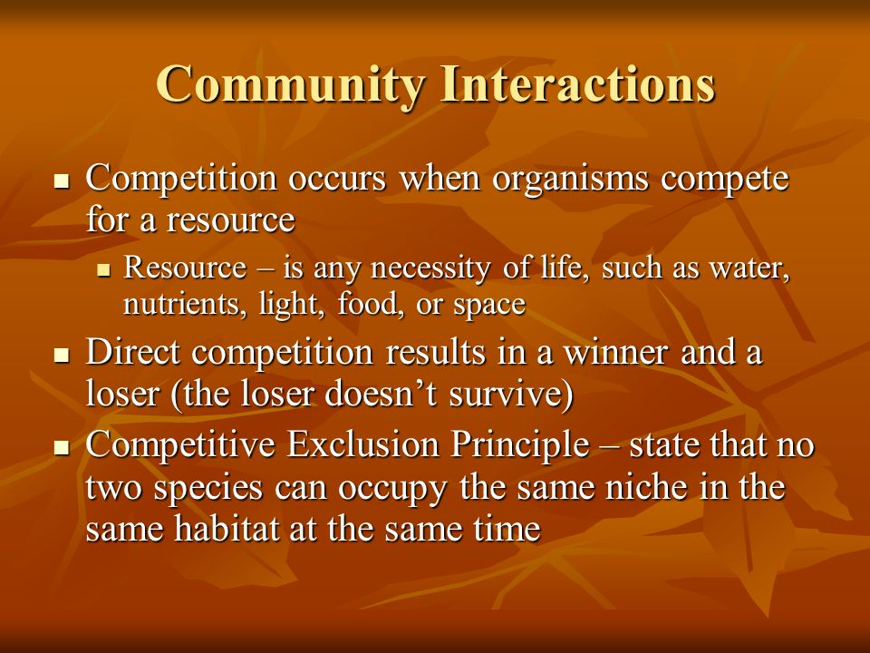 Community Interactions Competition occurs when organisms compete for a resource Competition occurs when organisms compete for a resource Resource – is any necessity of life, such as water, nutrients, light, food, or space Resource – is any necessity of life, such as water, nutrients, light, food, or space Direct competition results in a winner and a loser (the loser doesnt survive) Direct competition results in a winner and a loser (the loser doesnt survive) Competitive Exclusion Principle – state that no two species can occupy the same niche in the same habitat at the same time Competitive Exclusion Principle – state that no two species can occupy the same niche in the same habitat at the same time