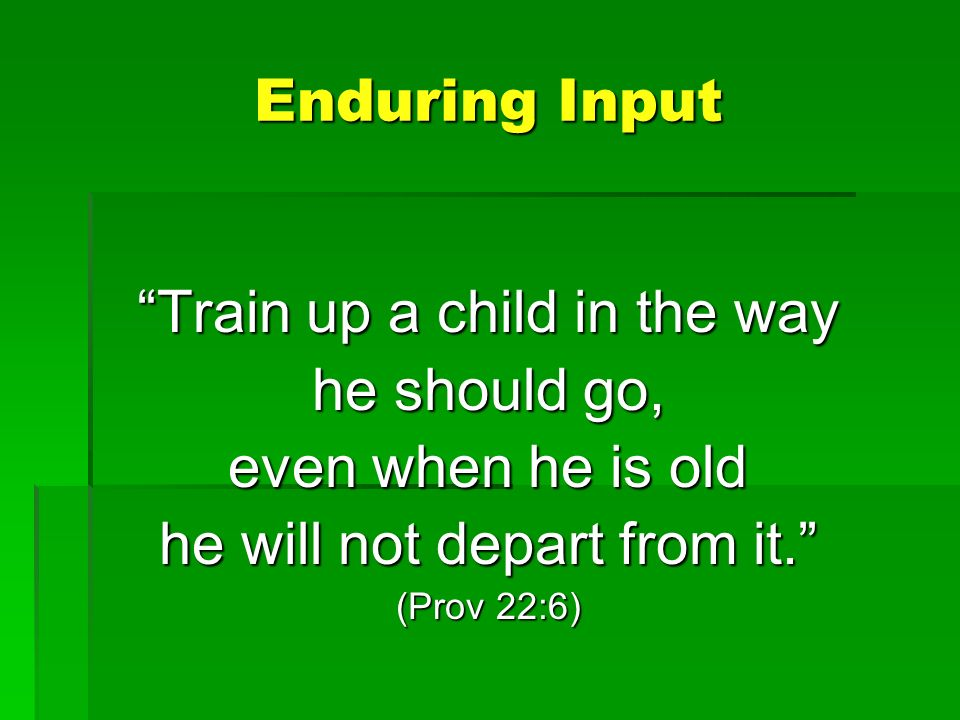 Enduring Input Train up a child in the wayTrain up a child in the way he should go, even when he is old he will not depart from it. (Prov 22:6)