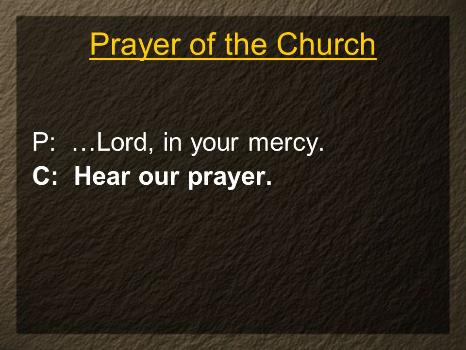 Prayer of the Church P: …Lord, in your mercy. C: Hear our prayer.