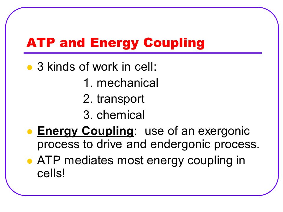 ATP and Energy Coupling 3 kinds of work in cell: 1. mechanical 2. transport 3. chemical Energy Coupling: use of an exergonic process to drive and ende