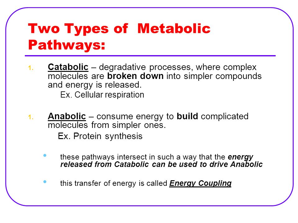 Energy & Bioenergetics Defined as capacity to do work (move matter against opposing forces).