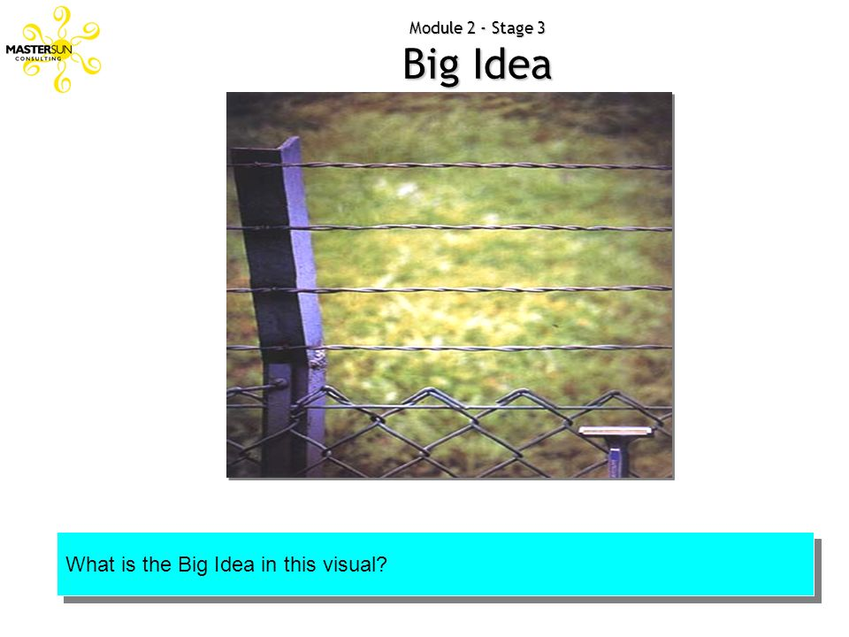 Module 2 - Stage 3 Big Idea What is the Big Idea in this visual?