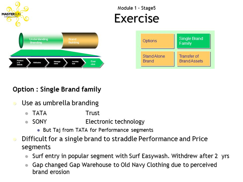 Module 1 - Stage5 Exercise Options Single Brand Family Stand Alone Brand Transfer of Brand Assets Option : Single Brand family Use as umbrella brandin