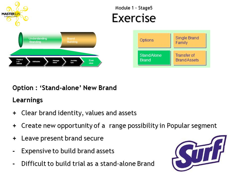 Module 1 - Stage5 Exercise Options Single Brand Family Stand Alone Brand Transfer of Brand Assets Option : Stand-alone New Brand Learnings + Clear bra