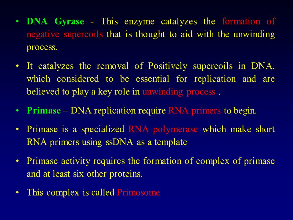 DNA Helicases - These proteins bind to the double stranded DNA and stimulate the separation of the two strands. DNA single-stranded binding proteins -
