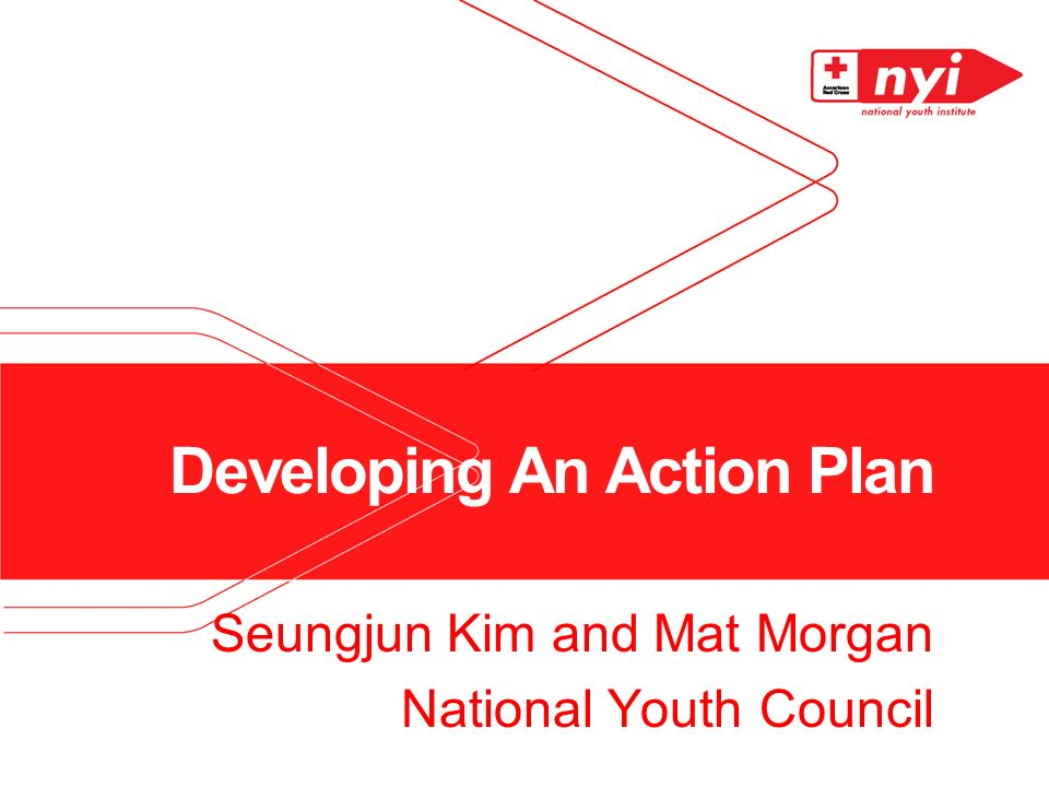 Developing An Action Plan Seungjun Kim and Mat Morgan National Youth Council