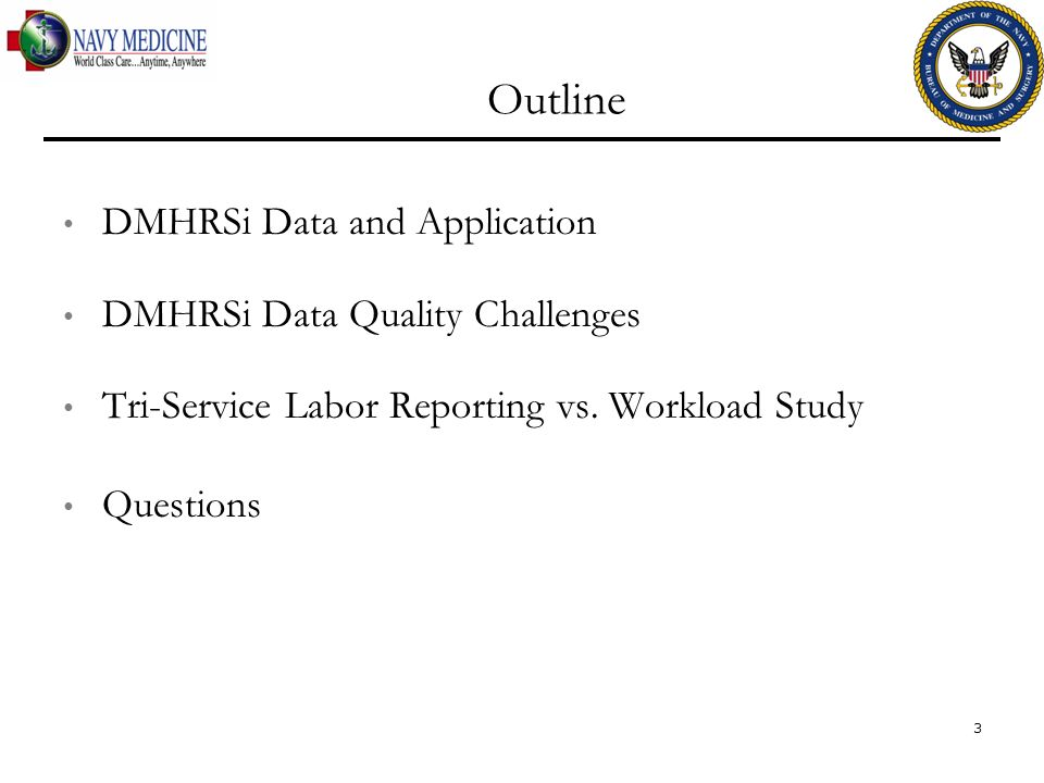 Outline DMHRSi Data and Application DMHRSi Data Quality Challenges Tri-Service Labor Reporting vs. Workload Study Questions 3
