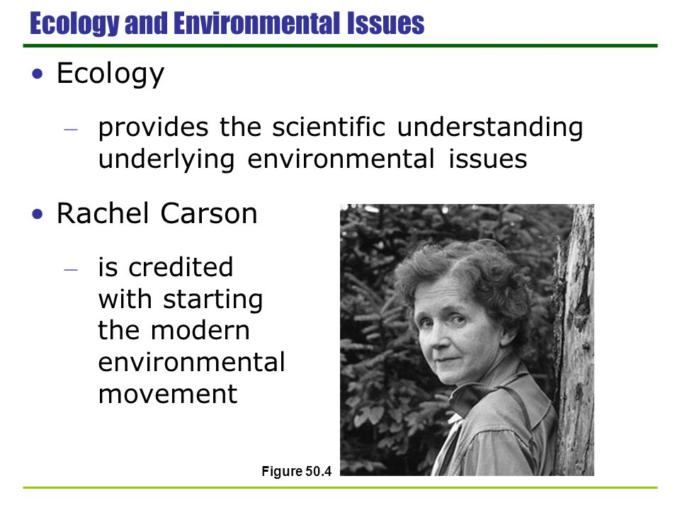 Ecology and Environmental Issues Ecology – provides the scientific understanding underlying environmental issues Rachel Carson – is credited with star