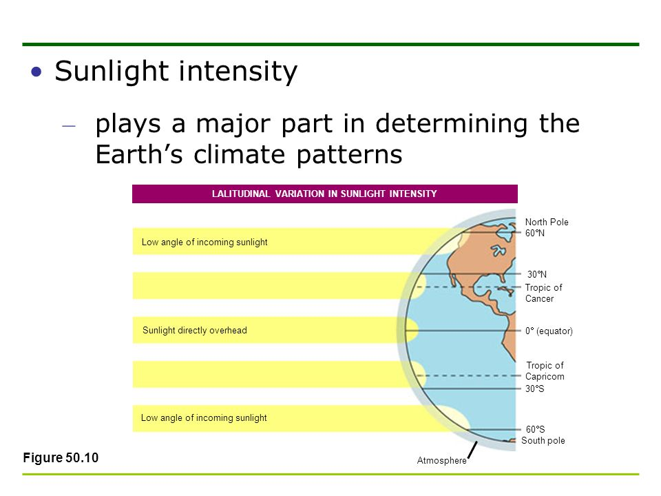 Sunlight intensity – plays a major part in determining the Earths climate patterns Figure 50.10 Low angle of incoming sunlight Sunlight directly overh
