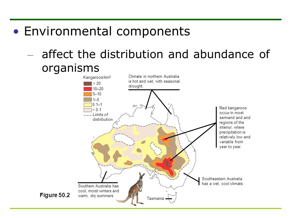 Environmental components – affect the distribution and abundance of organisms Figure 50.2 Kangaroos/km 2 > 20 10–20 5–10 1–5 0.1–1 < 0.1 Limits of dis