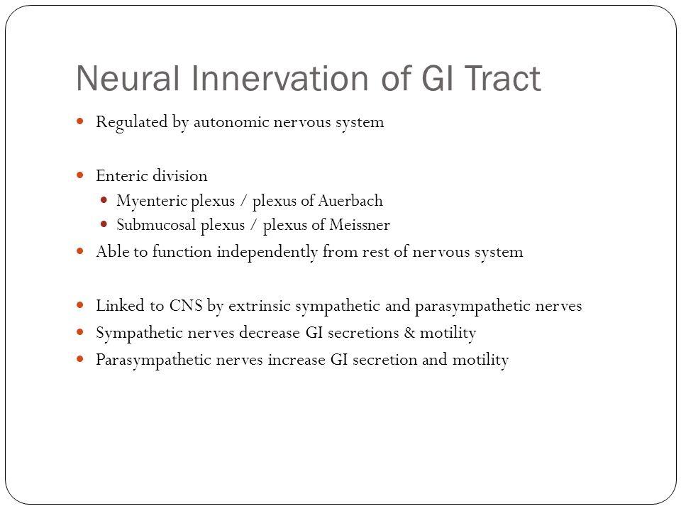 Neural Innervation of GI Tract Regulated by autonomic nervous system Enteric division Myenteric plexus / plexus of Auerbach Submucosal plexus / plexus