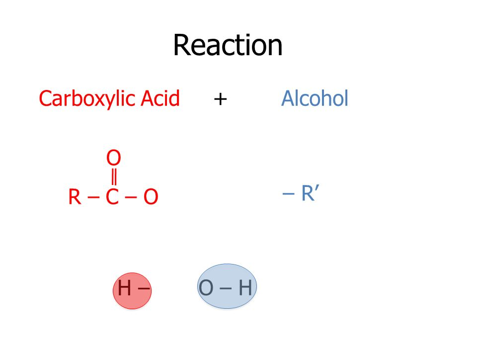 Reaction R – C – O O – R O – H H – Carboxylic Acid + Alcohol