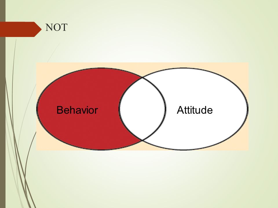 NOT BehaviorAttitude