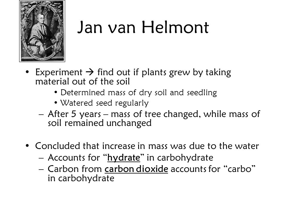 Jan van Helmont Experiment find out if plants grew by taking material out of the soil Determined mass of dry soil and seedling Watered seed regularly