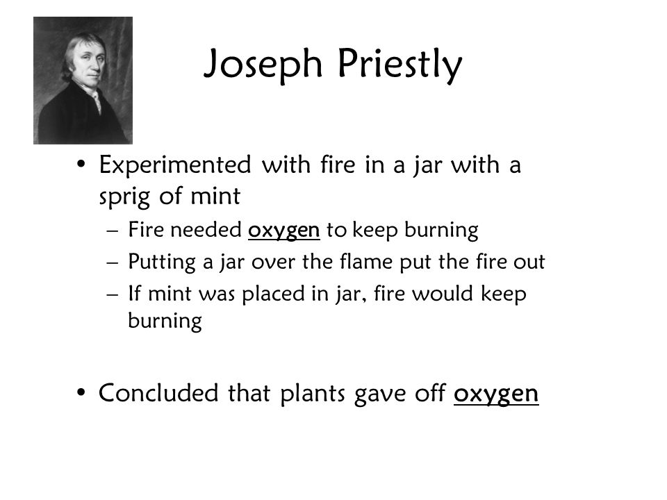 Joseph Priestly Experimented with fire in a jar with a sprig of mint –Fire needed oxygen to keep burning –Putting a jar over the flame put the fire ou