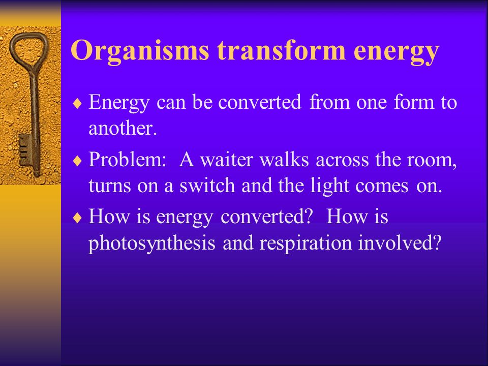 Organisms transform energy Energy can be converted from one form to another. Problem: A waiter walks across the room, turns on a switch and the light