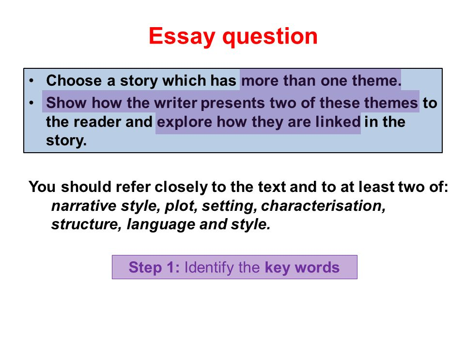 essay and questions