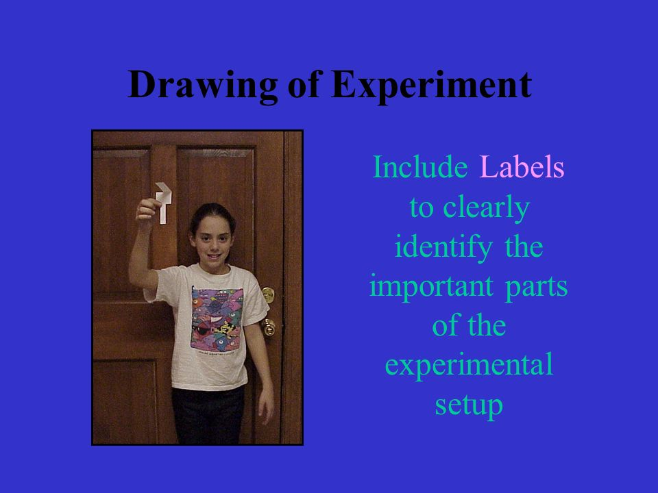 Drawing of Experiment Include Labels to clearly identify the important parts of the experimental setup