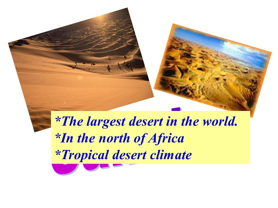 *The largest desert in the world. *In the north of Africa *Tropical desert climate