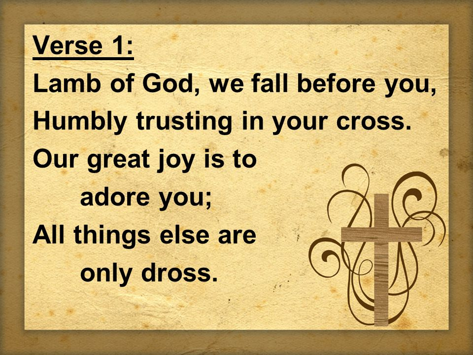 Verse 1: Lamb of God, we fall before you, Humbly trusting in your cross. Our great joy is to adore you; All things else are only dross.