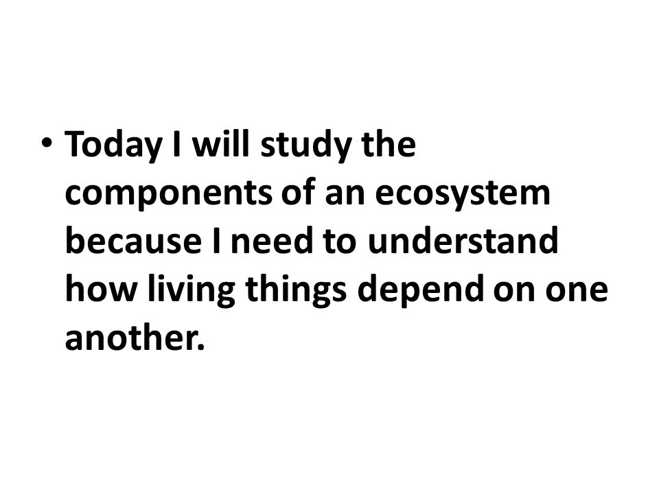 Today I will study the components of an ecosystem because I need to understand how living things depend on one another.