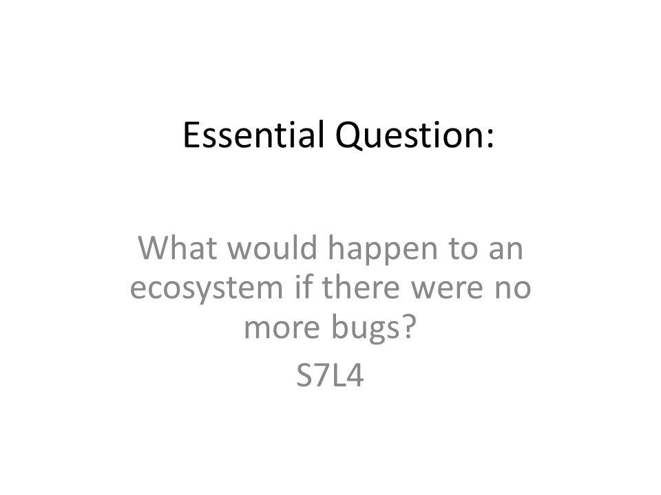 Essential Question: What would happen to an ecosystem if there were no more bugs? S7L4