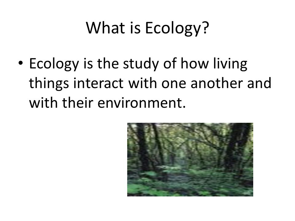 Question: How do biotic and abiotic factors differ?