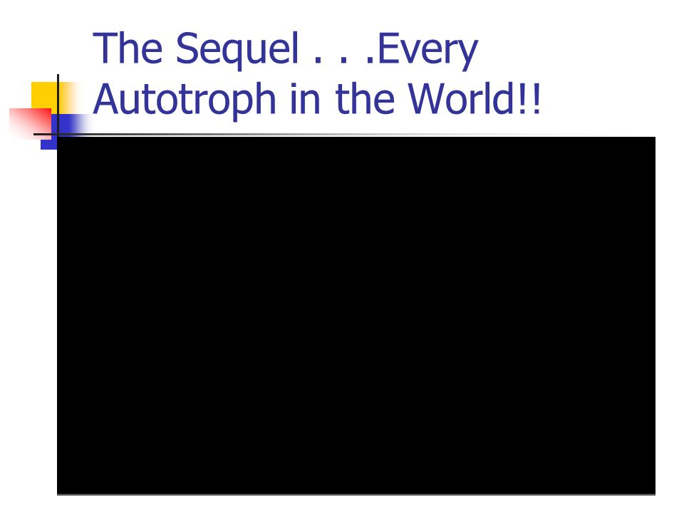 The Sequel...Every Autotroph in the World!!