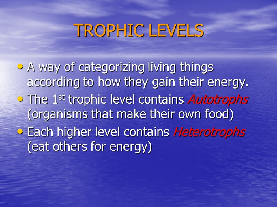 TROPHIC LEVELS A way of categorizing living things according to how they gain their energy. A way of categorizing living things according to how they