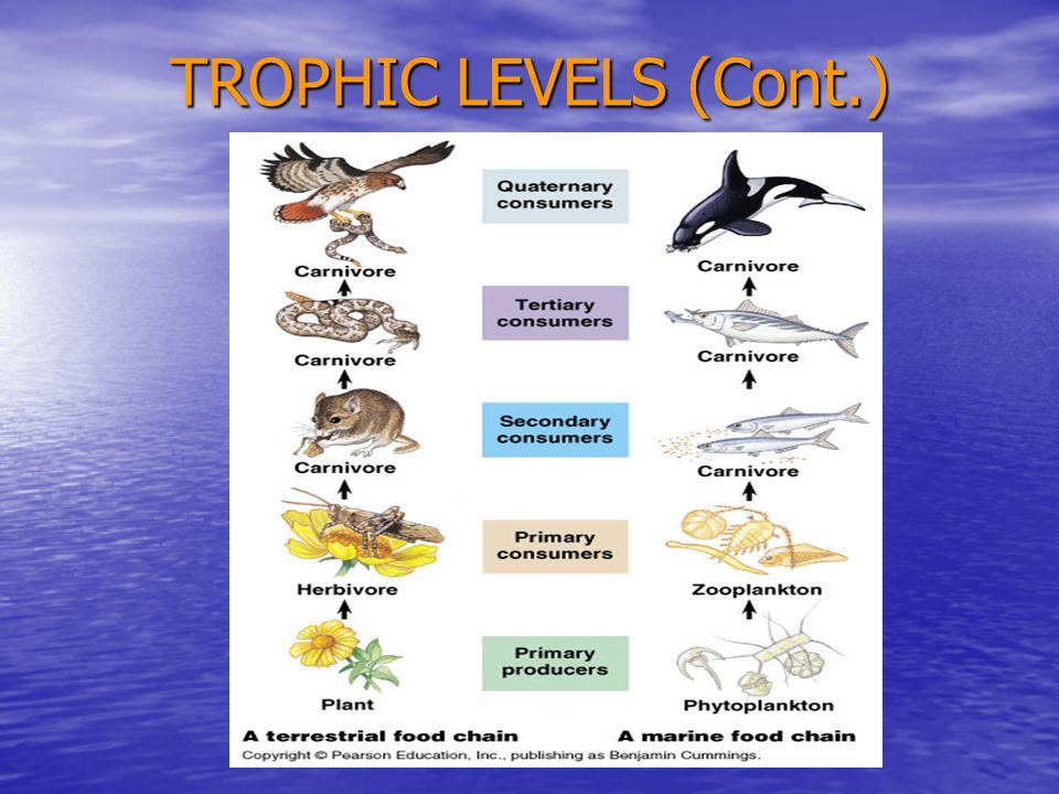 TROPHIC LEVELS (Cont.)
