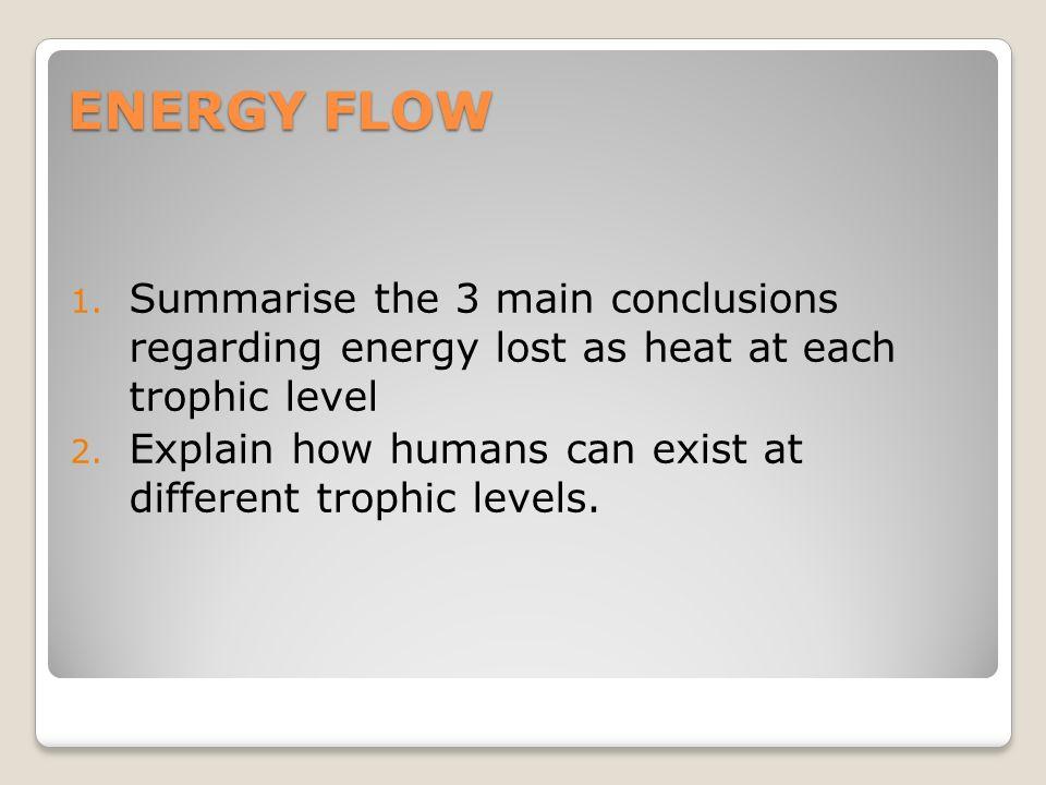 ENERGY FLOW 1.