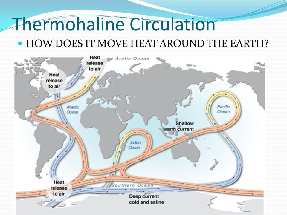 Thermohaline Circulation HOW DOES IT MOVE HEAT AROUND THE EARTH?