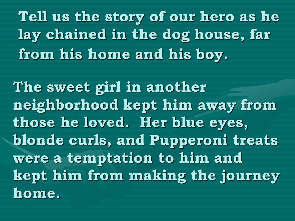Tell us the story of our hero as he lay chained in the dog house, far from his home and his boy.