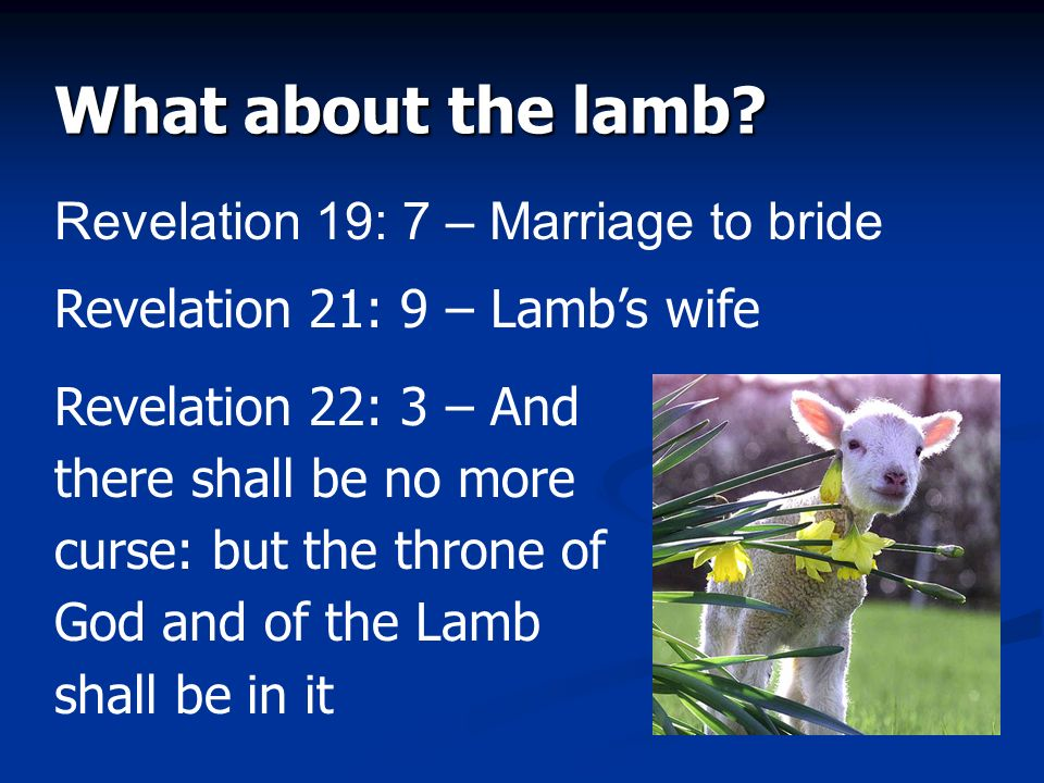 What about the lamb? Revelation 19: 7 – Marriage to bride Revelation 21: 9 – Lambs wife Revelation 22: 3 – And there shall be no more curse: but the t