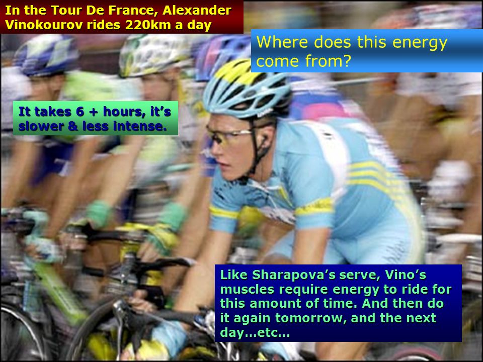 In the Tour De France, Alexander Vinokourov rides 220km a day Like Sharapovas serve, Vinos muscles require energy to ride for this amount of time.