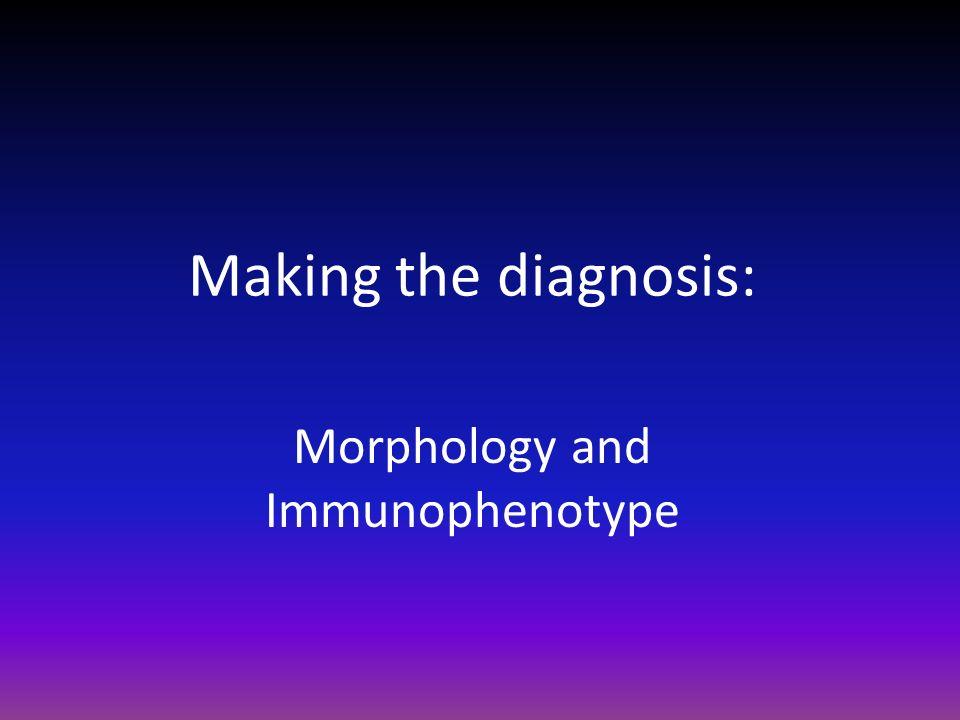 Making the diagnosis: Morphology and Immunophenotype