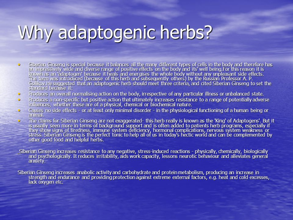 Why adaptogenic herbs? Siberian Ginseng is special because it balances all the many different types of cells in the body and therefore has an impressi