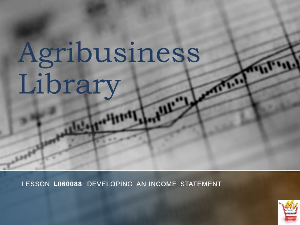 Agribusiness Library LESSON L060088: DEVELOPING AN INCOME STATEMENT