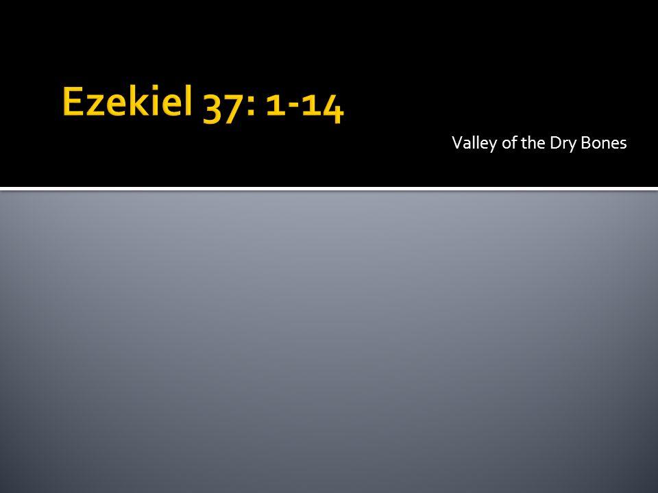Vision – 37: 1-10 Interpretation – 37:11-14 Israel – two aspects The Jew The Nation A distinctive: The Spirit Ezek.