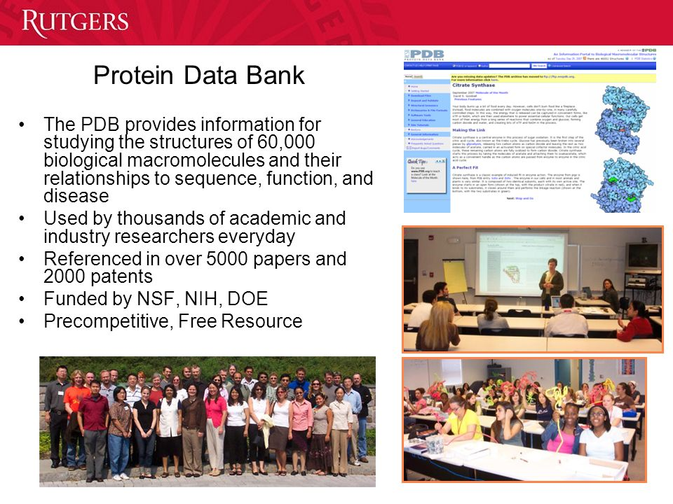 Protein Data Bank The PDB provides information for studying the structures of 60,000 biological macromolecules and their relationships to sequence, fu