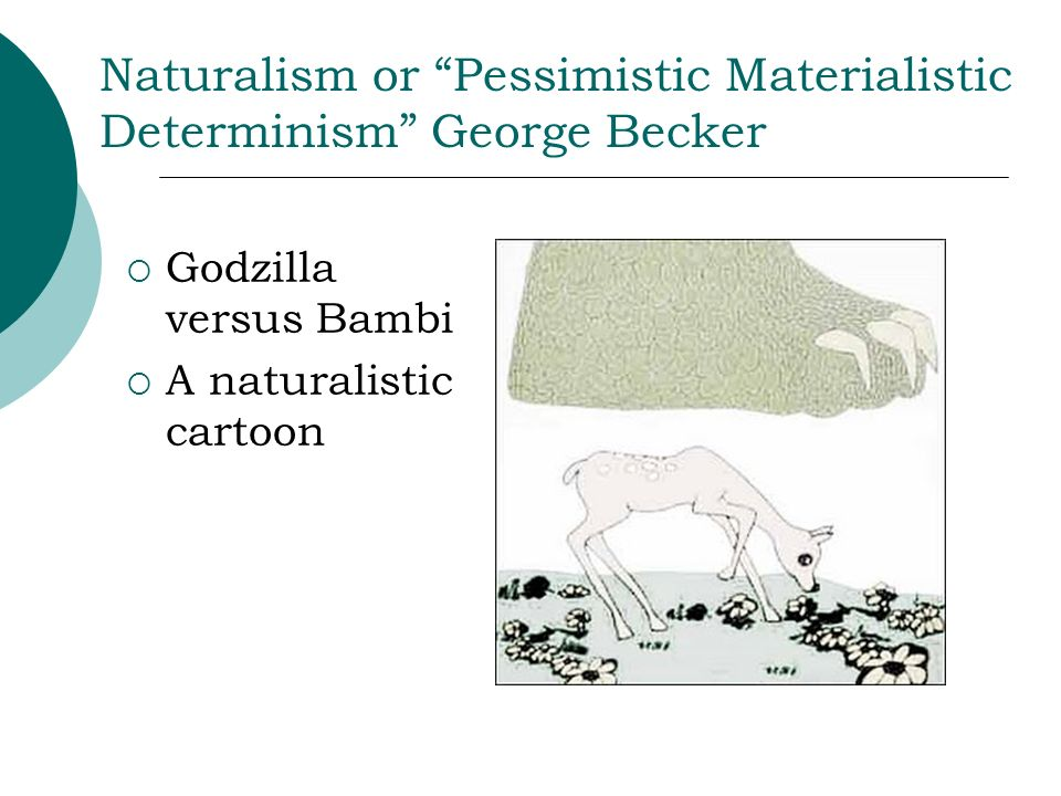 Naturalism or Pessimistic Materialistic Determinism George Becker Godzilla versus Bambi A naturalistic cartoon