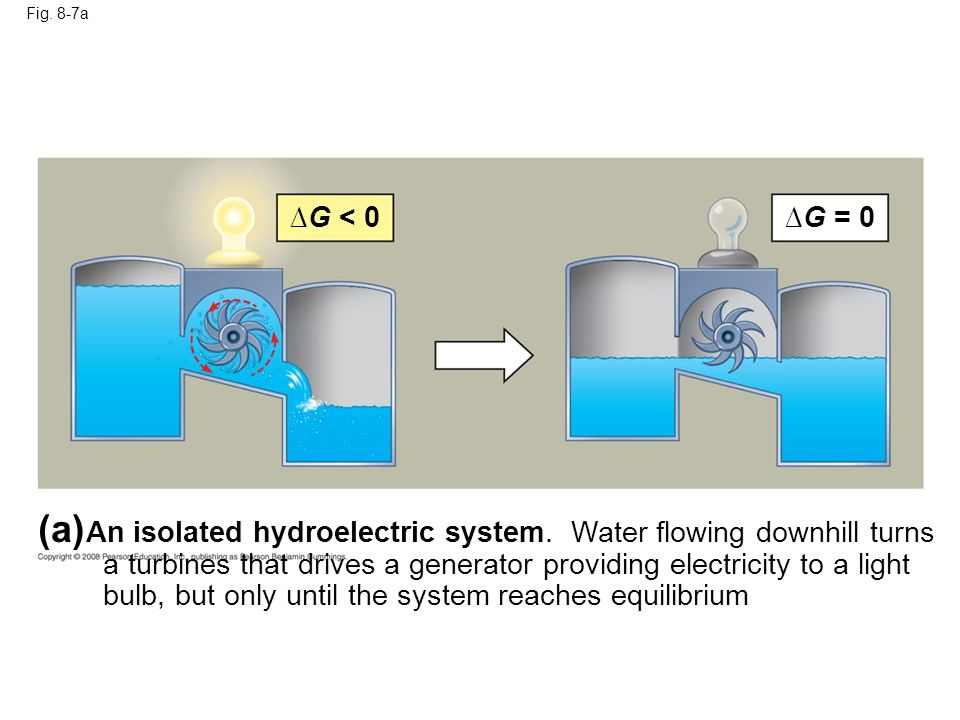 Fig. 8-7a (a) An isolated hydroelectric system. Water flowing downhill turns a turbines that drives a generator providing electricity to a light bulb,