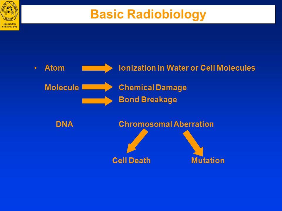 Basic Radiobiology Atom Ionization in Water or Cell Molecules Molecule Chemical Damage Bond Breakage DNA Chromosomal Aberration Cell Death Mutation