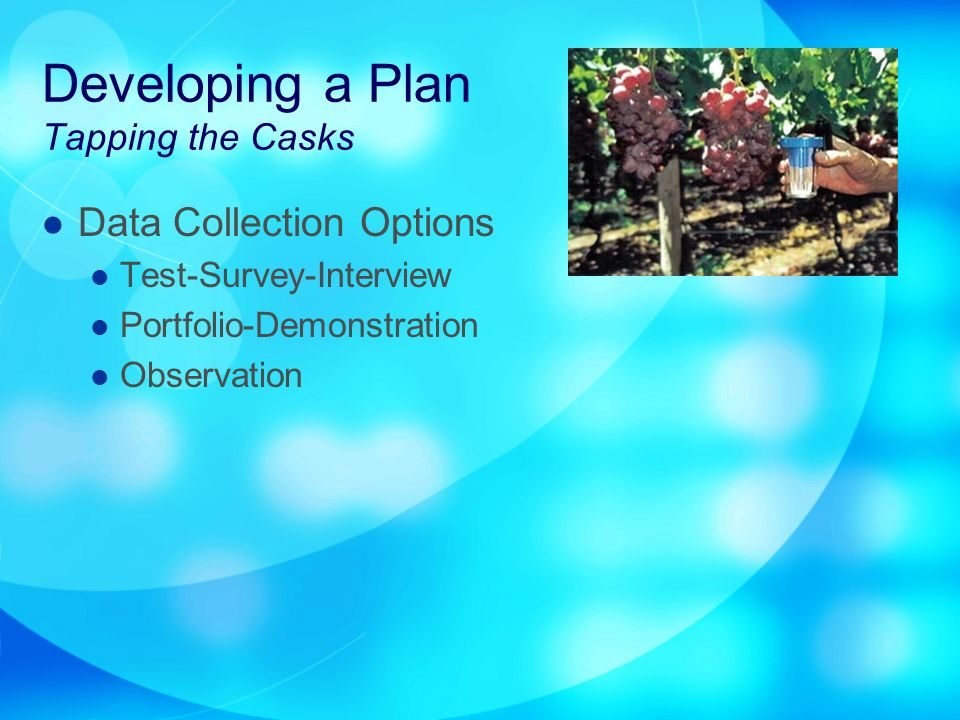 Developing a Plan Tapping the Casks Data Collection Options Test-Survey-Interview Portfolio-Demonstration Observation